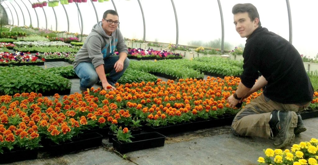 2nde pro productions horticoles